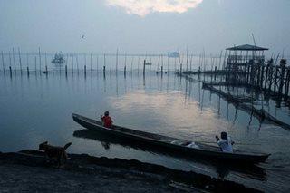 15 bahay sa gilid ng Laguna Lake giniba