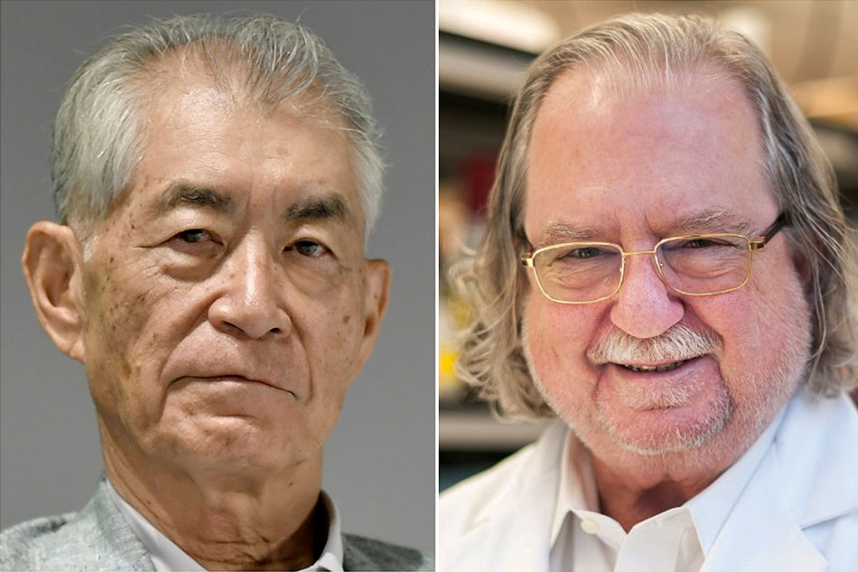 Scientists behind cancer immunotherapies win Nobel medicine prize