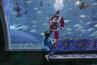 Submerged Santa