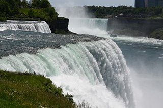 Man survives plunge over Niagara Falls