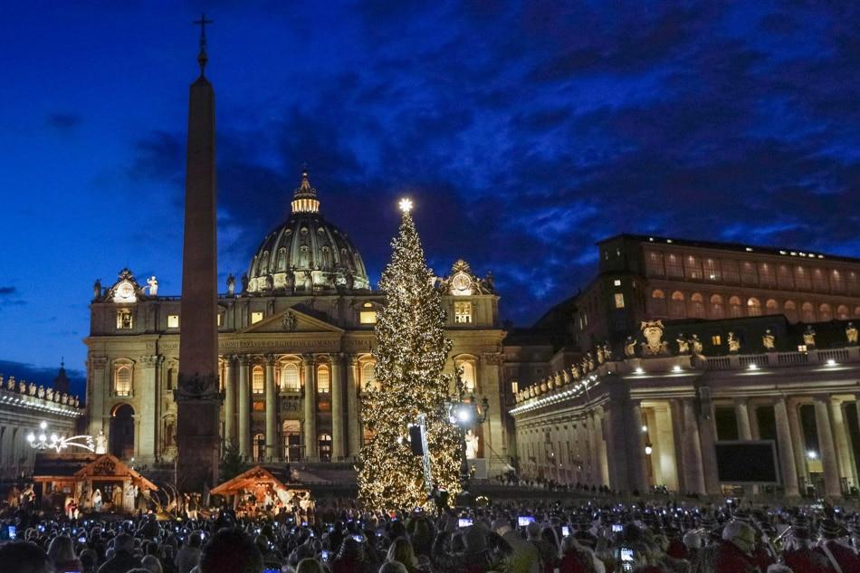 Vatican Christmas tree lights up