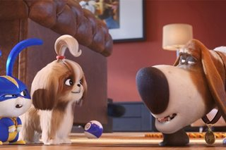 Movie review: 'Secret Life of Pets 2' is adorable and action-packed