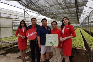 'Farm to air': AirAsia sources vegetables from Silang for inflight salads, wraps