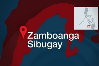 P10M worth of illegal drugs seized in Zamboanga Sibugay
