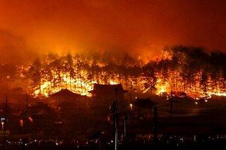 Wildfire hits Gangwon, South Korea