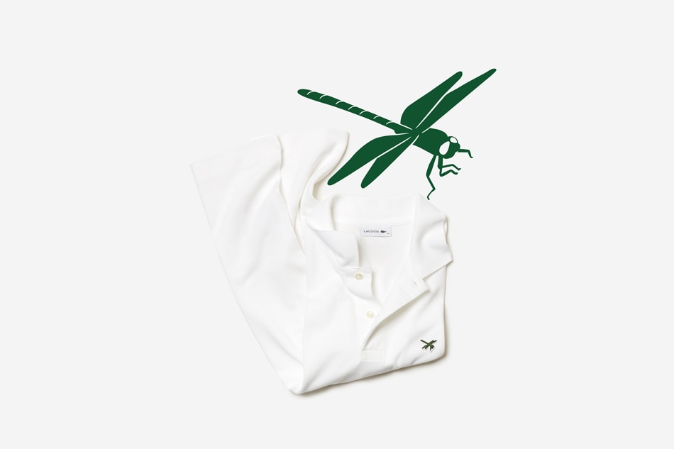 LOOK: Endangered insect in Cebu to be featured in Lacoste shirts