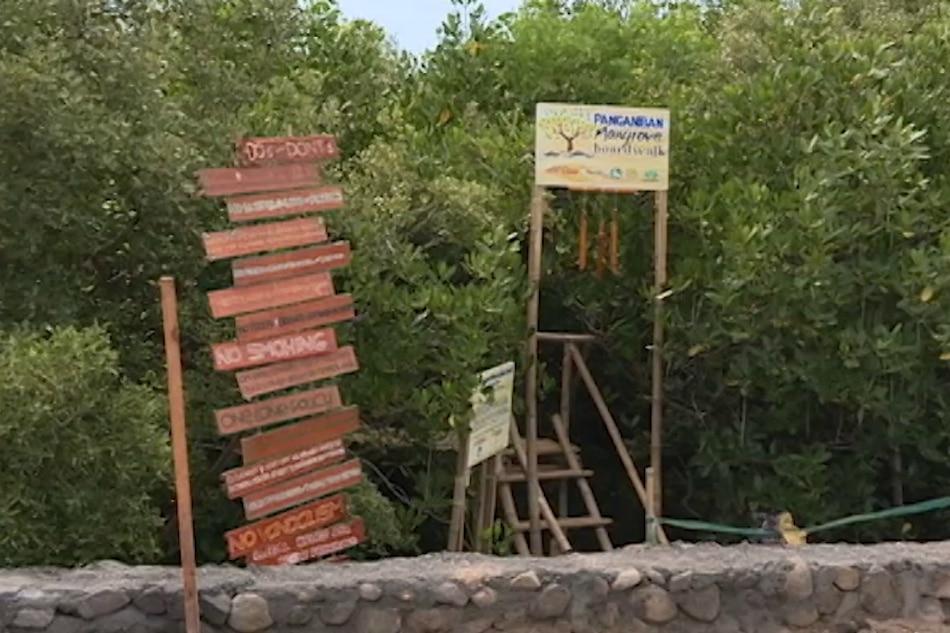 Panganiban Mangrove Boardwalk, bagong atraksiyon sa Sorsogon