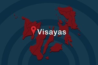 Western Visayas logs 9 new coronavirus cases, total at 13