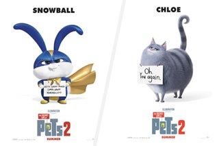 WATCH: 'Secret Life of Pets 2' spotlights Snowball, Chloe