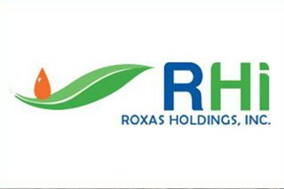 Asset sale slashed debt in half, 'derisked' business: Roxas Holdings