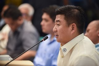 Mislatel needs 'official' act from both Senate, House: DICT