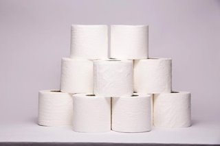 Consumers' use of toilet paper wiping out habitat, heating planet: report
