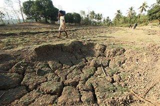 Irrigation agency downplays impact of El Niño on agri sector