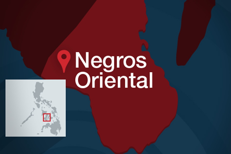 Negros 14' killing may be linked to anti-Reds campaign, land