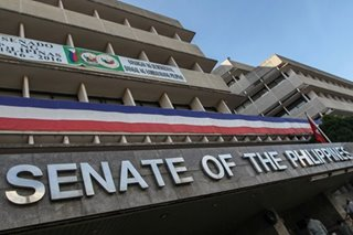 Senate panel to test 'hybrid election' system in May