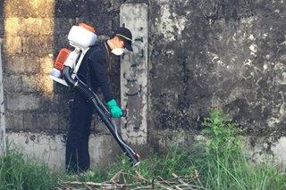 Anti-dengue spraying isinagawa sa Iloilo