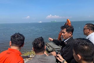 Cimatu's target: Manila Bay safe for swimming by December or earlier