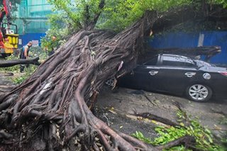 Balete crushes sedan