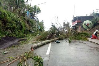 Tisoy knocked over 19 power line towers during Bicol onslaught: NGCP