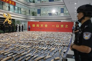 China seizes nearly 2,750 elephant tusks in huge bust