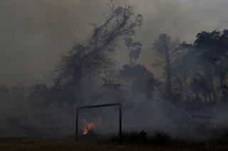 Peru, Colombia propose emergency Amazon summit as fires blaze