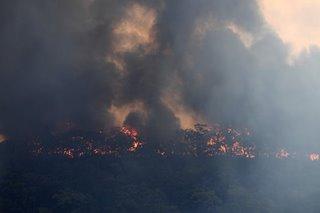 Death toll in Australia bushfires rises to 4