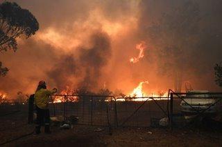 Several dead as bushfires hit emergency level on Sydney's outskirts