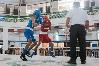 The next boxing sensation?