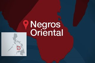 38 under watch for suspected coronavirus in Negros Oriental: governor