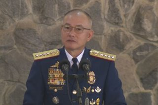 Hazing an 'affront' to PMA values, says Albayalde