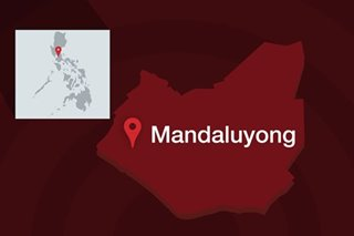COVID-19 lockdown: 13th month pay of Mandaluyong city hall employees out early