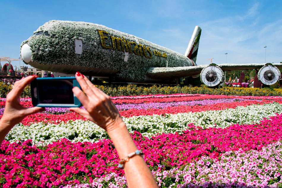 Miracle Garden's Airbus