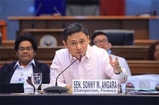 Senate budget panel chief expects P5-trillion 2021 'stimulus budget'