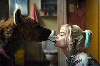 Movie review: Margot Robbie is fantabulous in 'Birds of Prey'