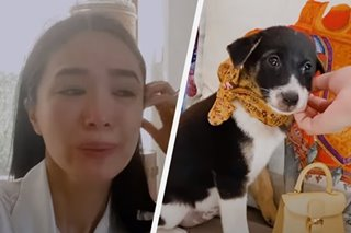 'It's just very hard': Heart Evangelista mourns death of pup — first since she started fostering at 13