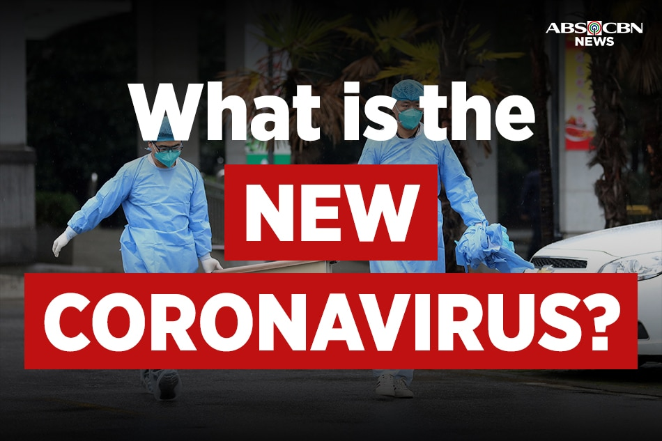 What we know so far about the novel coronavirus