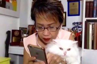 WATCH: 'Kapusa' Doris Bigornia, pet Bella 'react' to viral video of cat fight