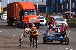 Trotting around Manila