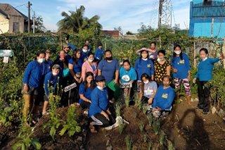 Urban farming sprouts in Payatas communities