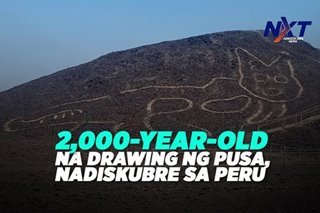 2,000-year-old na drawing ng pusa, nadiskubre sa Peru