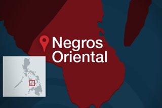 Negros Oriental under coronavirus lockdown starting April 3