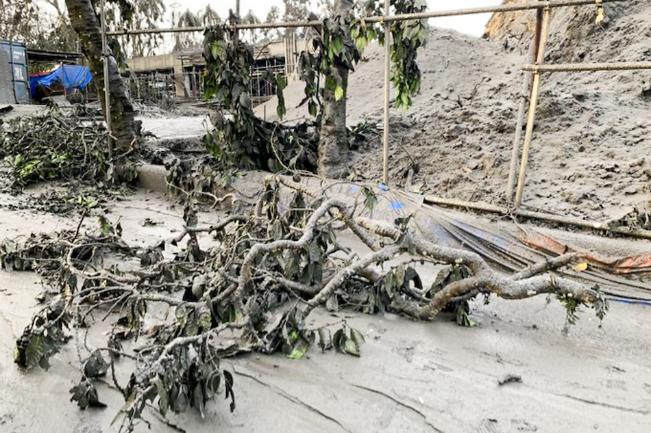 No Man's Land: Animals, plants in Taal island already dead after eruption - NDRRMC