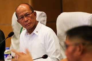 Lorenzana says no idea on 'rumored' US visa cancellation