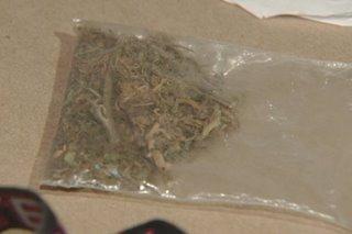 P1.2-M halaga ng 'marijuana' nasabat sa bus terminal sa Cubao