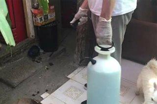 Barangay sa Cebu City, nagsagawa ng community disinfection laban sa coronavirus
