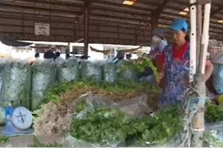 Gulay na di ma-deliver sa Kamaynilaan hahakutin ng Agri dep't