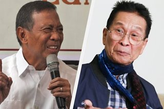 COVID-19 invasion? Duterte counsel's martial law view 'fanciful, hallucinatory,' says ex-VP Binay