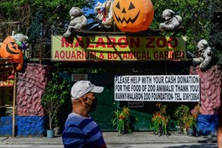 Malabon Zoo calls for donations for animals' food