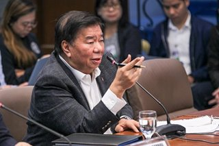Drilon says he aimed to join bicam committee in vote for anti-terror law