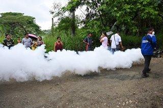 13 pagkamatay sa dengue naitala sa Pangasinan mula Enero